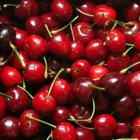 BLOOM-Cherries