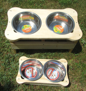 The boys also designed and made dog bowls to help dogs with megaesophagus.