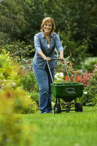 Melinda Myers fertilizes a lawn to help it recover from the stresses of summer. Photo by Mark Avery.