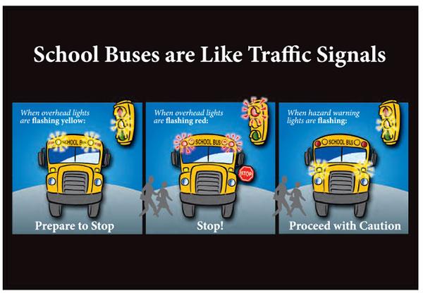 BACK-Bus-safety-1