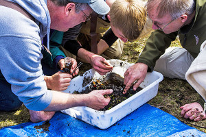 N-Stream-insect-monitoring-volunteers