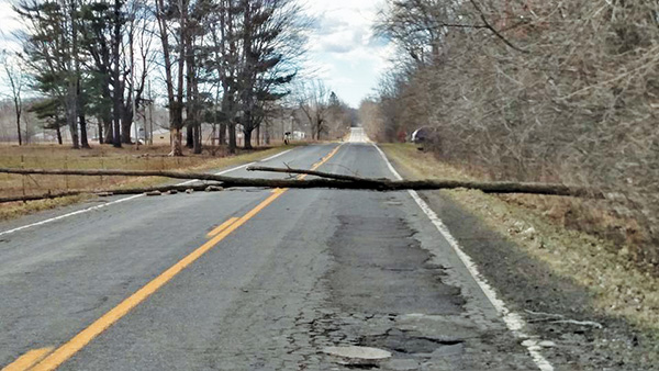 Jeannie Larsen sent us this photo of a tree that was blown down Wednesday and blocked Myers Lake Rd, near Pringle, in Nelson Township (near Sand Lake).