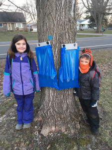 Gather: Leona and Silas LeSage out on a maple sap gathering outing.