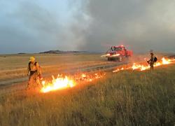 Michigan DNR wildfire fighters help battle western blazes