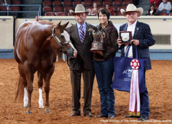 Sparta horse owner wins another world title