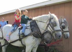 Free wagon rides a hit at Solon Market