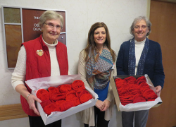 Group knits red hats for babies born in Greenville