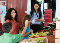Smart nutrition tips for healthy families
