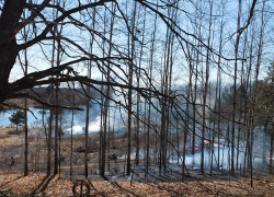 Brush fire burns out of control