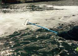 Health advisory issued regarding PFAS in foam on Rogue River
