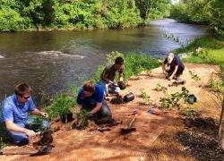 Volunteers needed for Cedar Creek tree planting