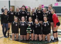 Red Hawk volleyball ends season at districts