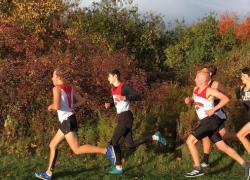 JV boys compete well at Kent Ottawa meet