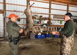 Top 10 hunting violations during firearm deer season