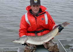 Fishing tip: Where to find northern pike in Michigan
