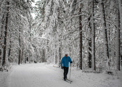 Everyone can get outdoors to beat the winter blues