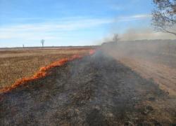 Fletcher grasslands prescribed burns